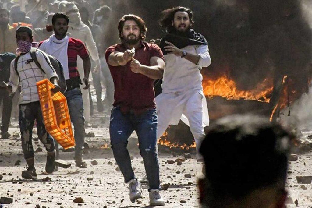 Delhi Riots Accused Shahrukh Pathan Bail Plea: Delhi High Court