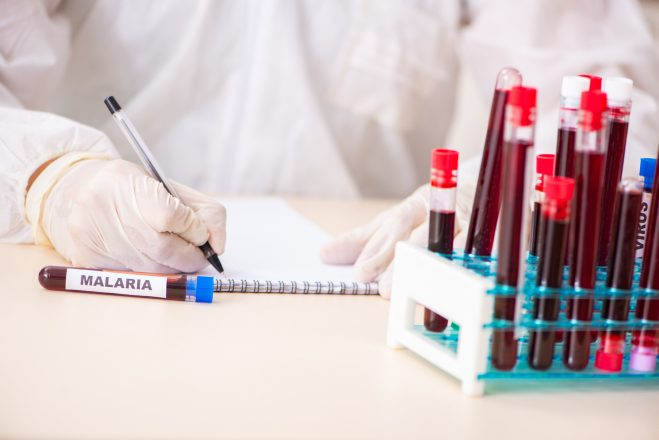 Investigational malaria vaccine gives strong, lasting protection