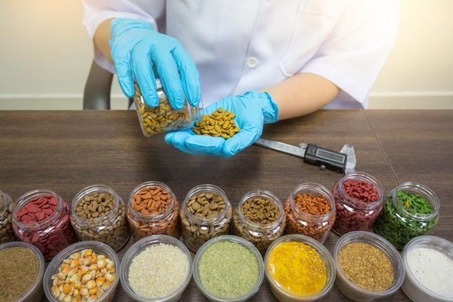 Public health risk from multidrug-resistant bacteria in dog food